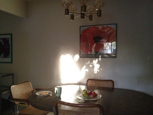 Morning light in the dining room
