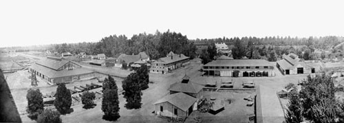 A panoramic view of the Kearney Farm c 1903.