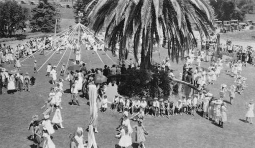 The palm tree in a May Day Celebration.